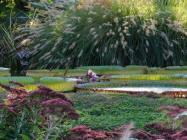 Manutenzione giardini Bardolino (VR)