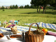 Desenzano del garda bs aree per fare un picnic o un barbecue - Area tavoli picnic barbecue roma ...