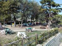 Dove fare un picnic a Desenzano