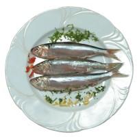 Pesce del Garda: Cavedano