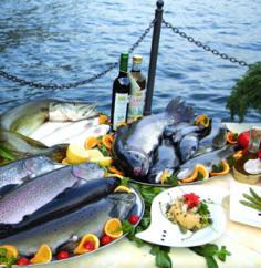 Tutti I Tipi Di Pesce Di Lago Più Cucinati E Pescati Sul Lago Di