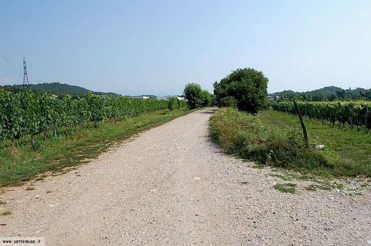Foto pista ciclabile Arzaga/Lonato