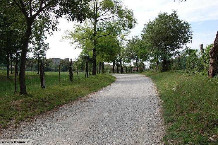 Foto pista ciclabile Drugolo