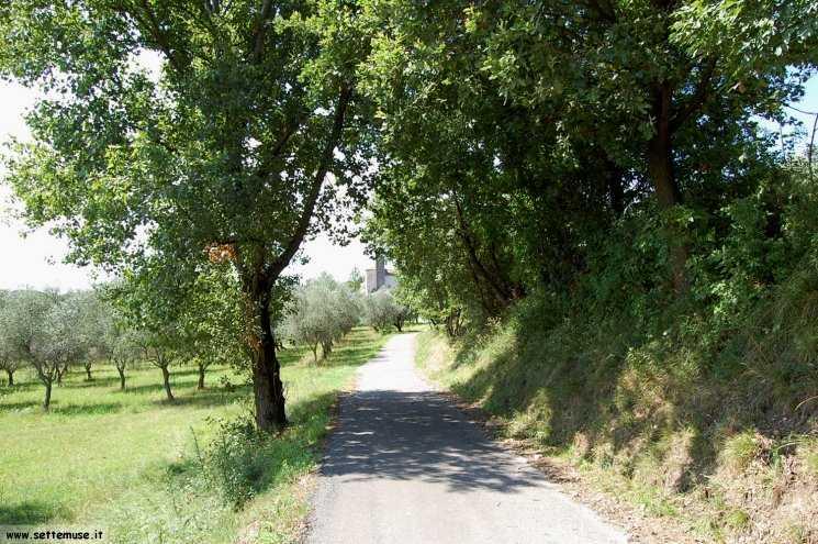 Foto pista ciclabile Padenghe/Maguzzano