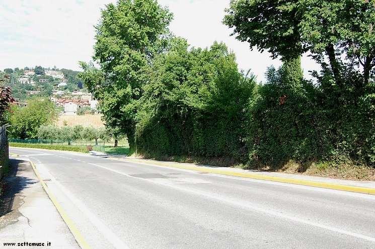 Foto passeggiata Padenghe Verde