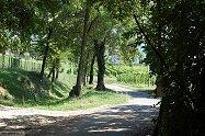 Laghi di Sovenigo-Villa di Salò