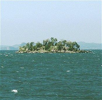 isola dell'Olivo