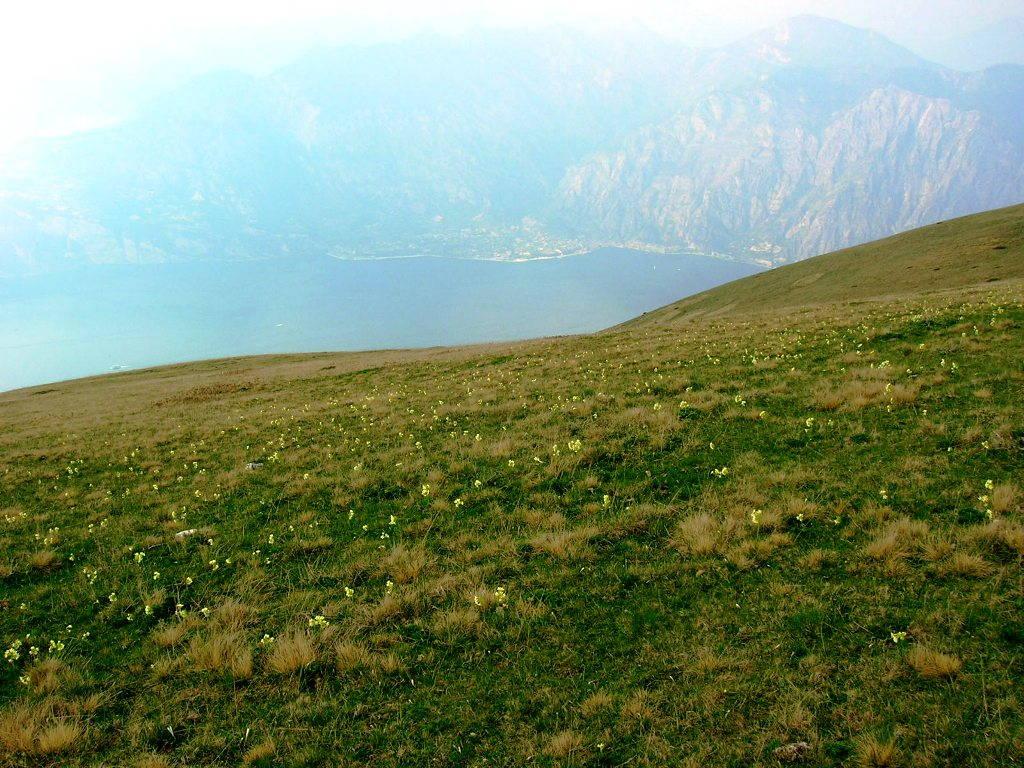 Montagna e Lago di Garda