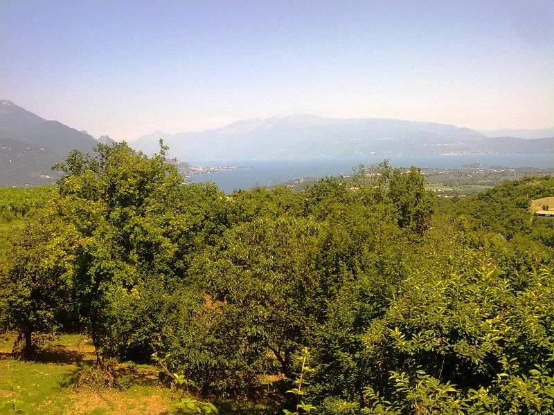 Colline del Lago di Garda