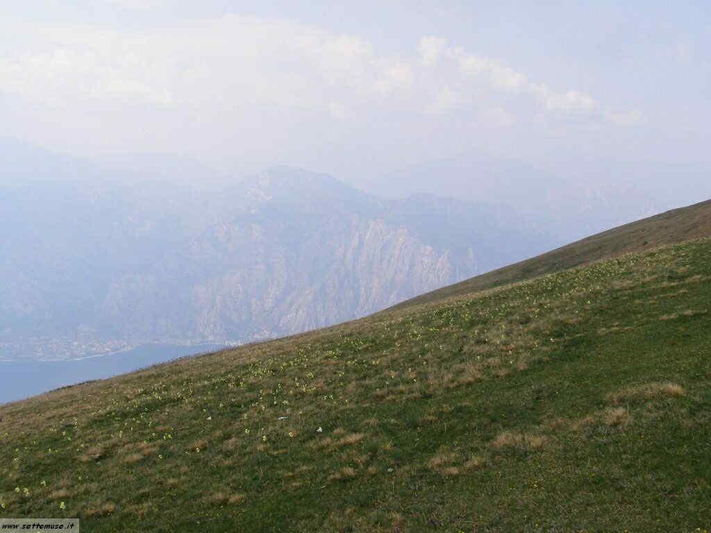 Monte Baldo_068.jpg