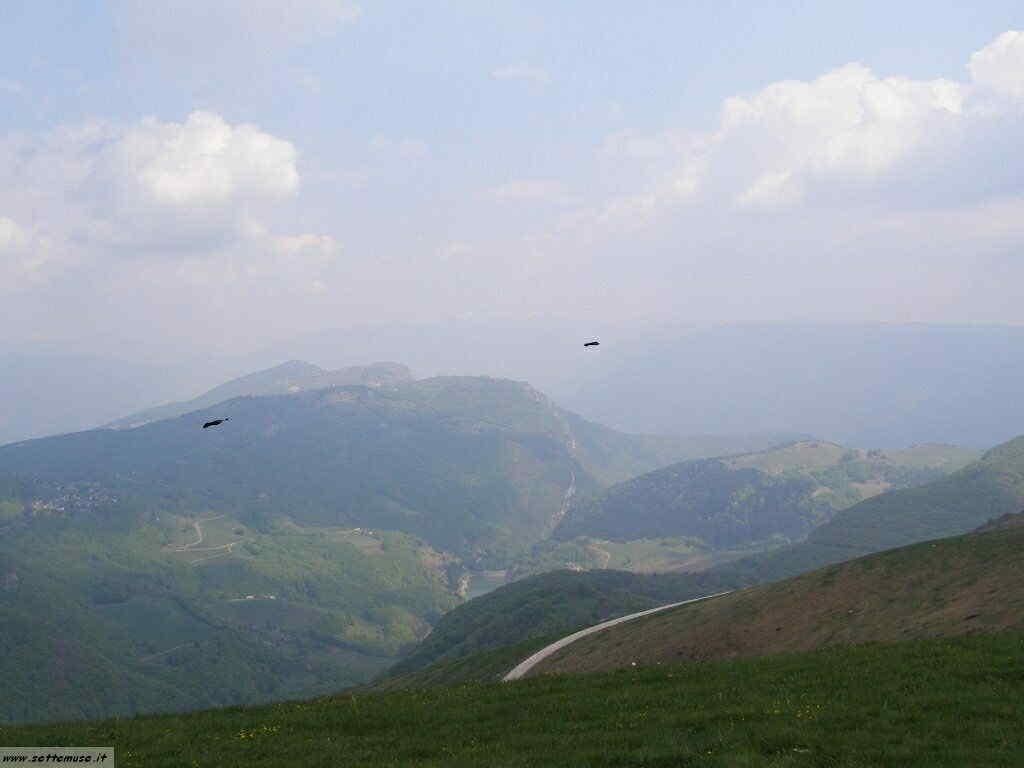 Monte Baldo_077.jpg