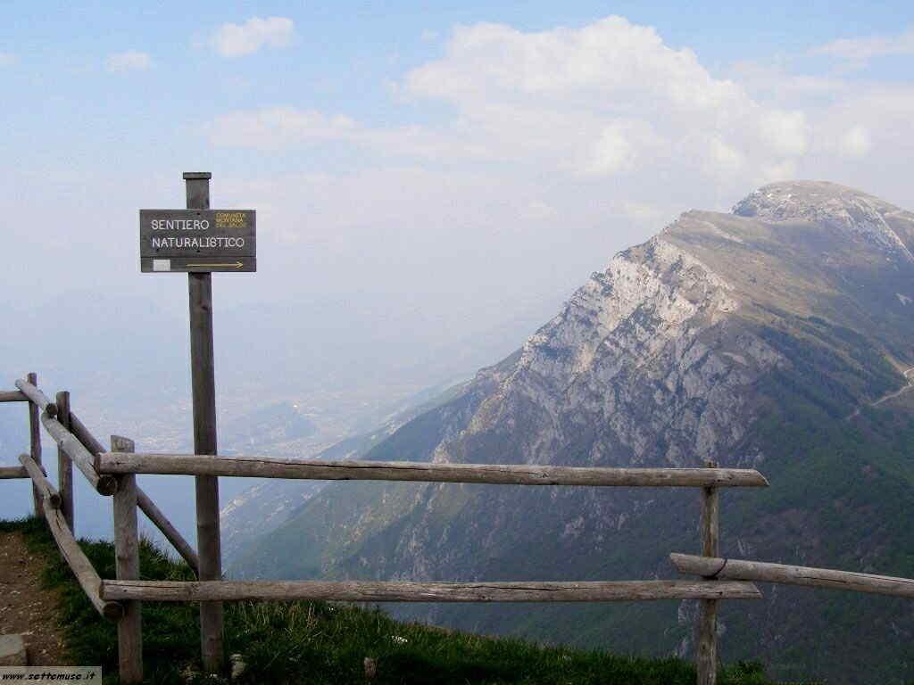 Monte Baldo_079.jpg