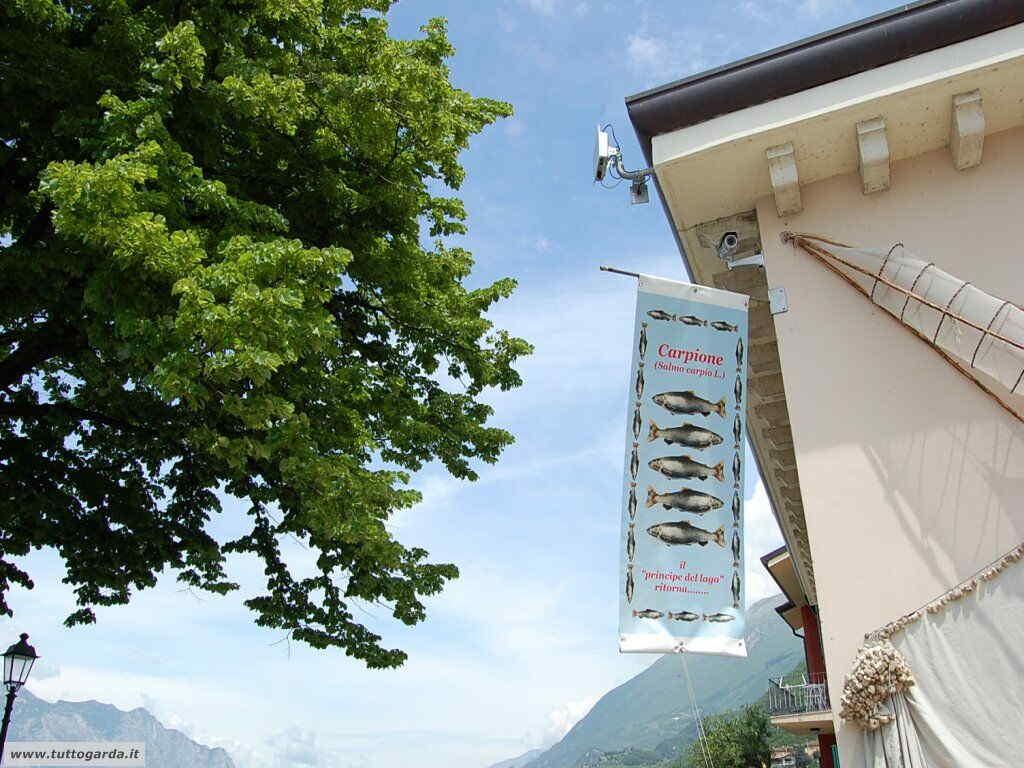 Museo del Lago a Cassone (VR)
