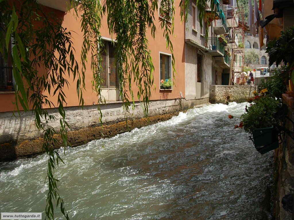 Fiume Aril a Cassone (VR)