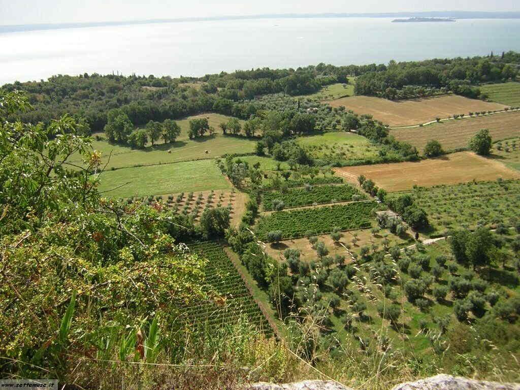 Rocca di Manerba del Garda-140.JPG