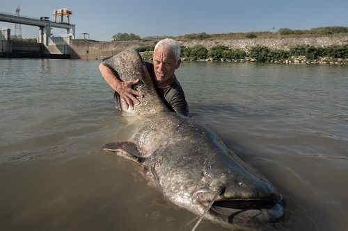 River Monster sul Lago di Garda