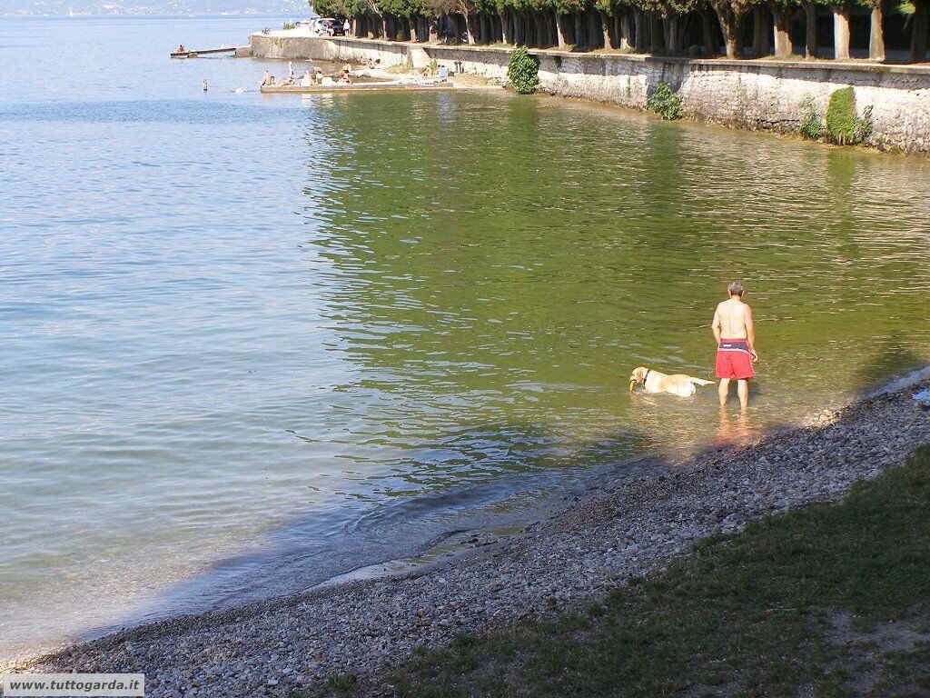 Spiaggia addestramento cani Salò (BS)