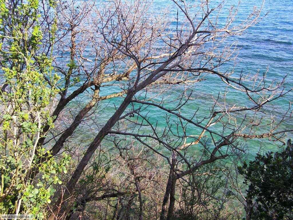 Lago di Garda da Chiesa di San Fermo a San Felice del Benaco (BS)