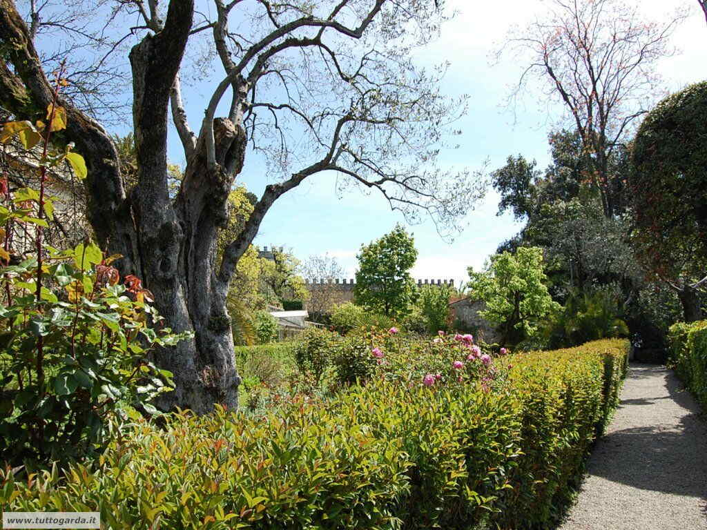 Isola del Garda foto del giardino -136.JPG