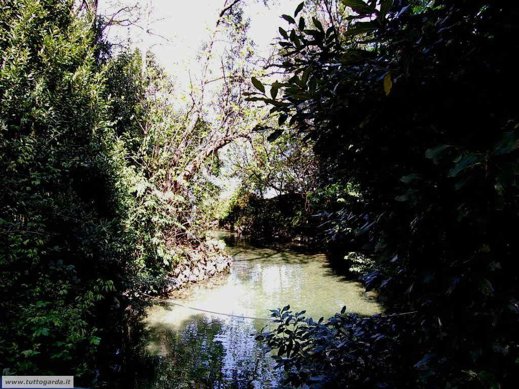 Isola del Garda foto del giardino -198.JPG