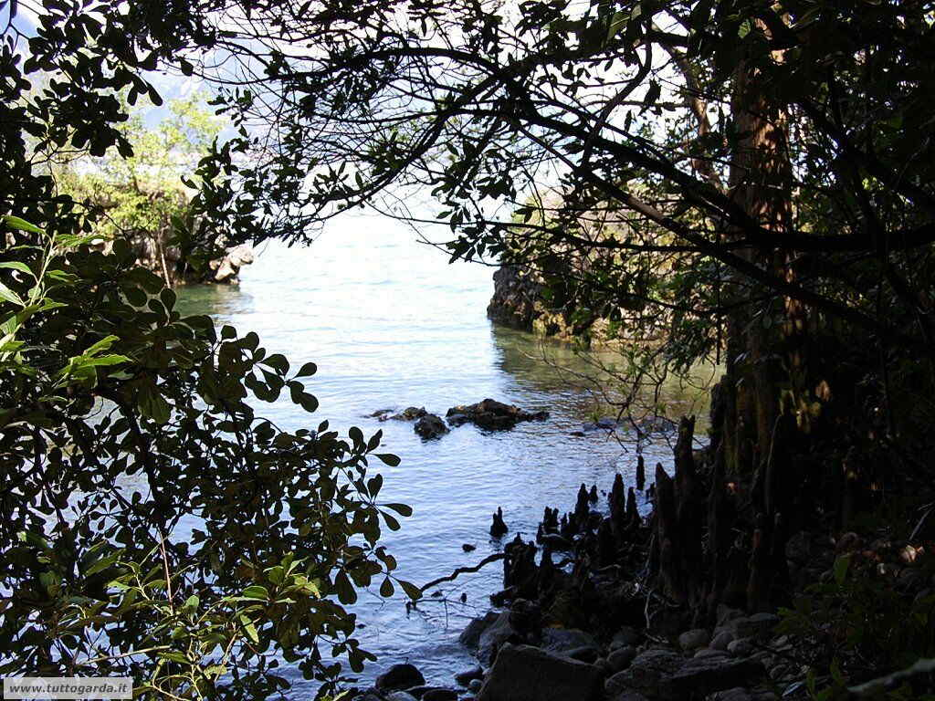 Isola del Garda foto del giardino -199.JPG