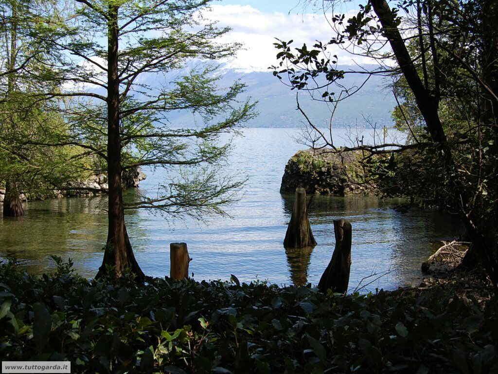 Isola del Garda foto del giardino -202.JPG