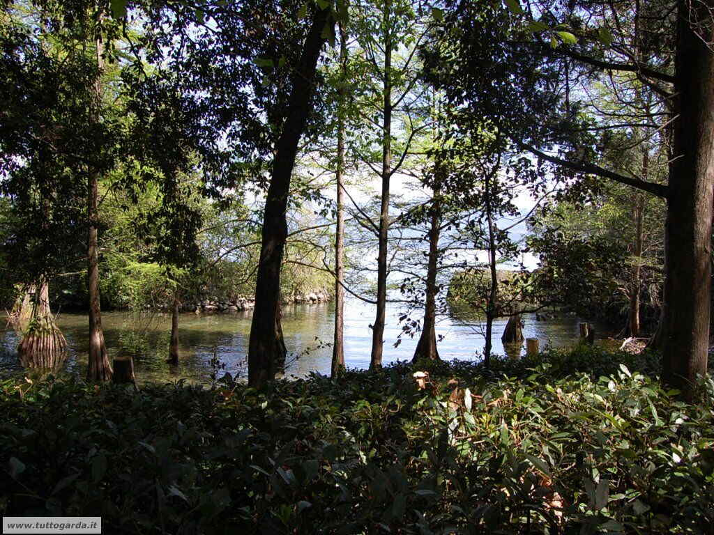 Isola del Garda foto del giardino -204.JPG