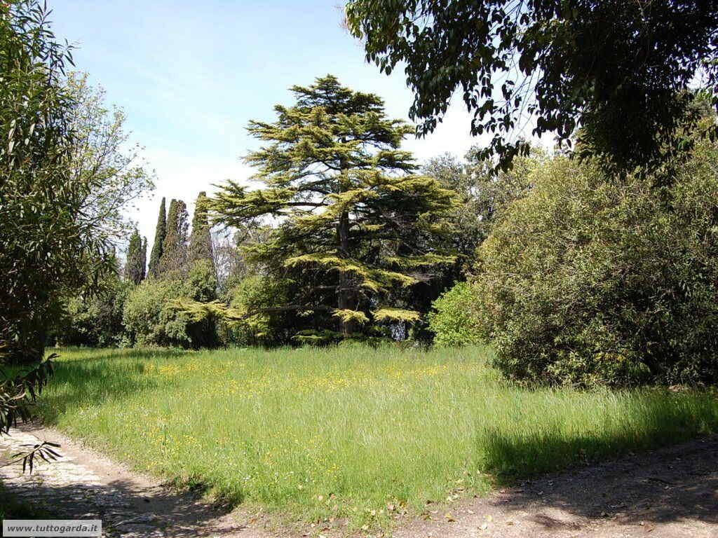Isola del Garda foto del giardino -207.JPG