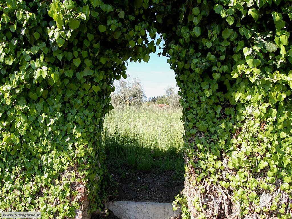 visite/san_felice_009_santuario_del_carmine.JPG