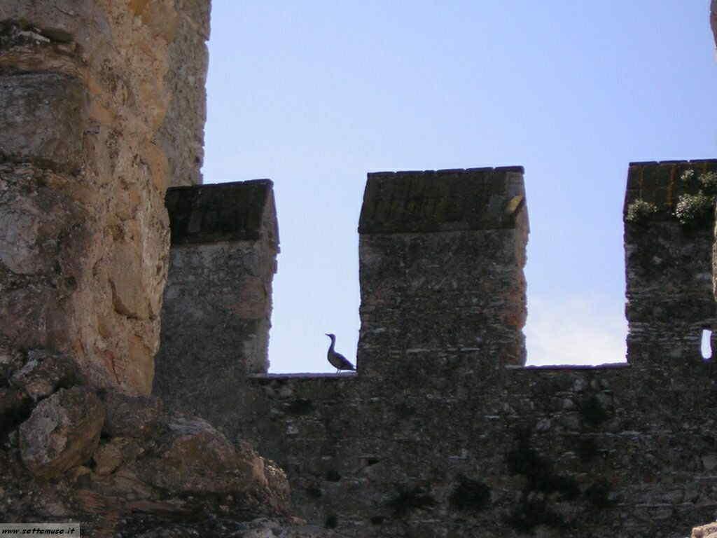 Sirmione Foto Castello