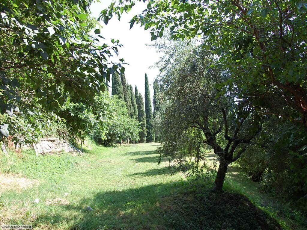 Castello di Soiano - il parco 010