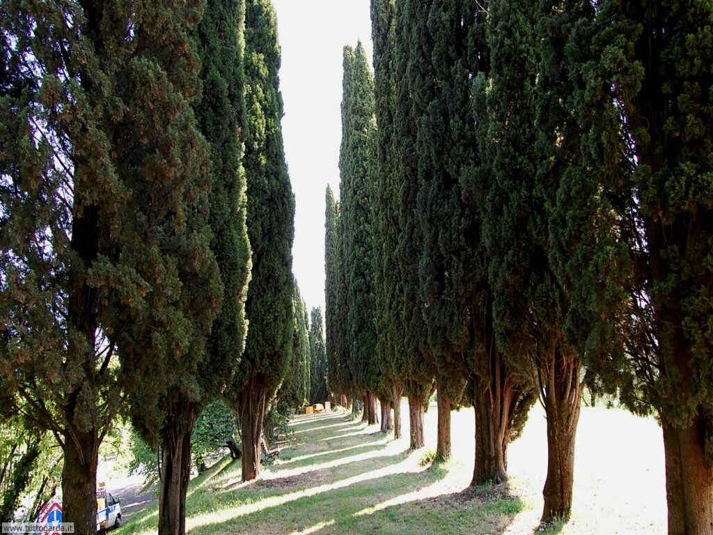 Castello di Soiano - il parco 011
