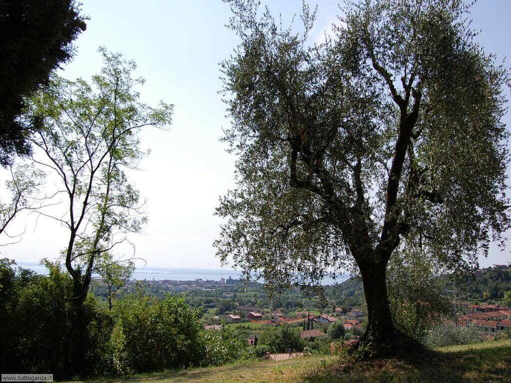 Castello di Soiano - panorama 013