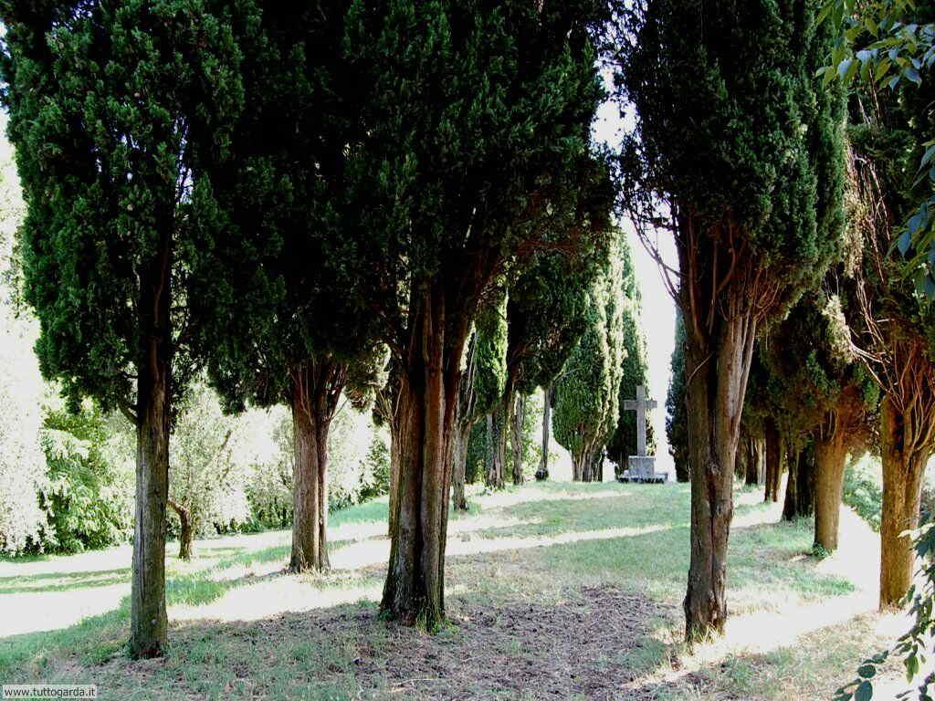 Castello di Soiano - il parco 014