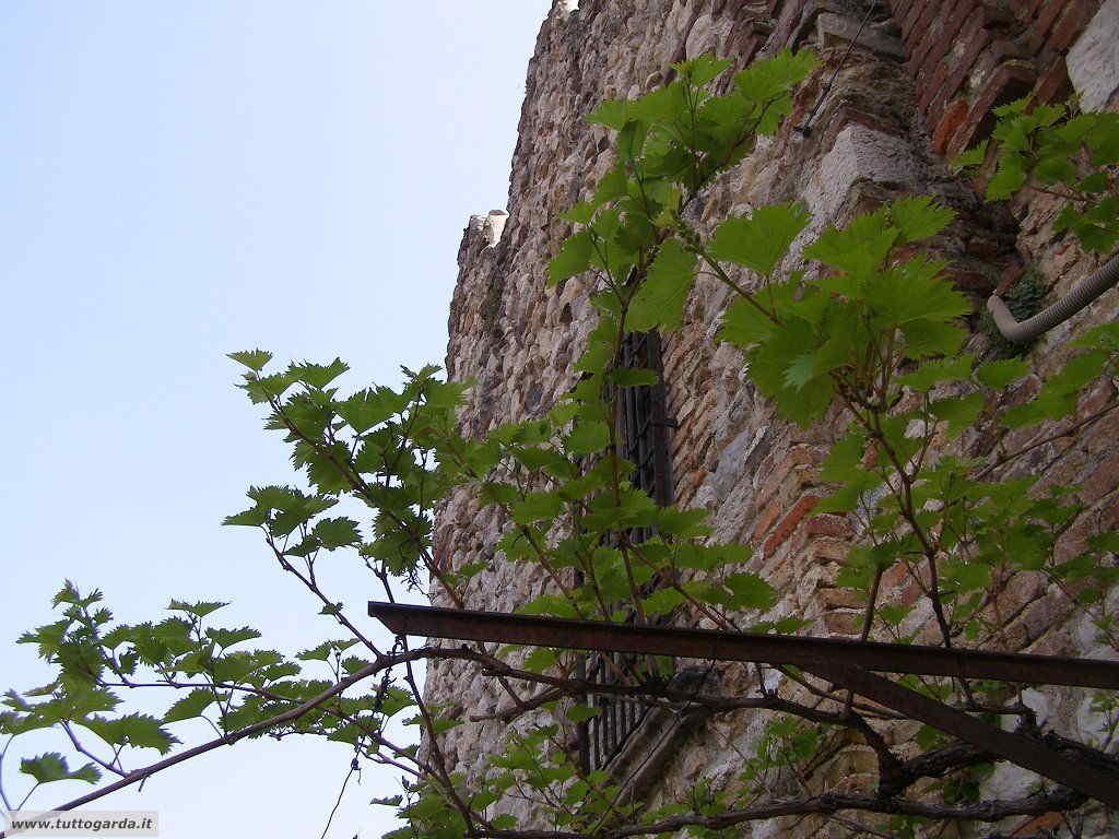 Soiano del Lago (BS) Foto di un dettaglio del Castello 002