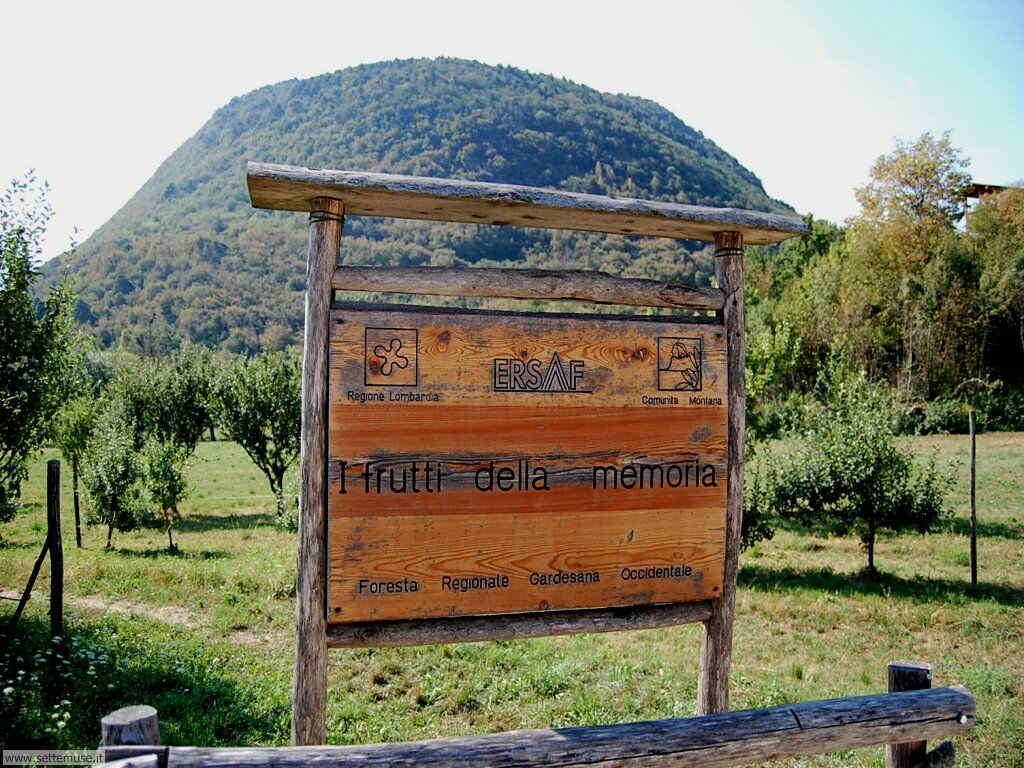 Parco Alto Garda Bresciano e Osservatorio Naturalistico 35