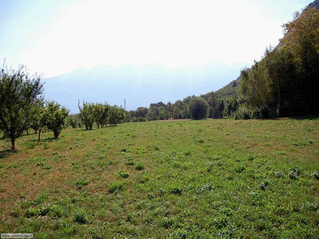 Parco Alto Garda Bresciano e Osservatorio Naturalistico 37