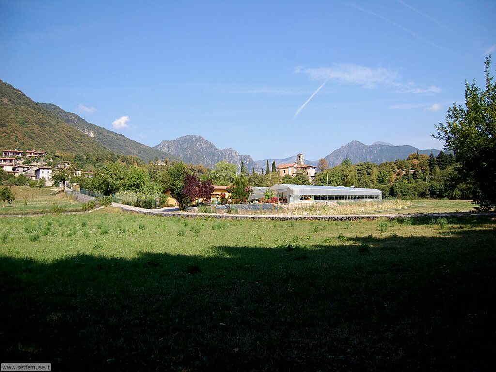 Parco Alto Garda Bresciano e Osservatorio Naturalistico 39