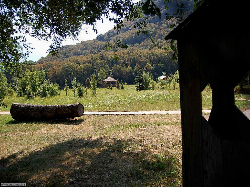 Parco Alto Garda Bresciano e Osservatorio Naturalistico 40