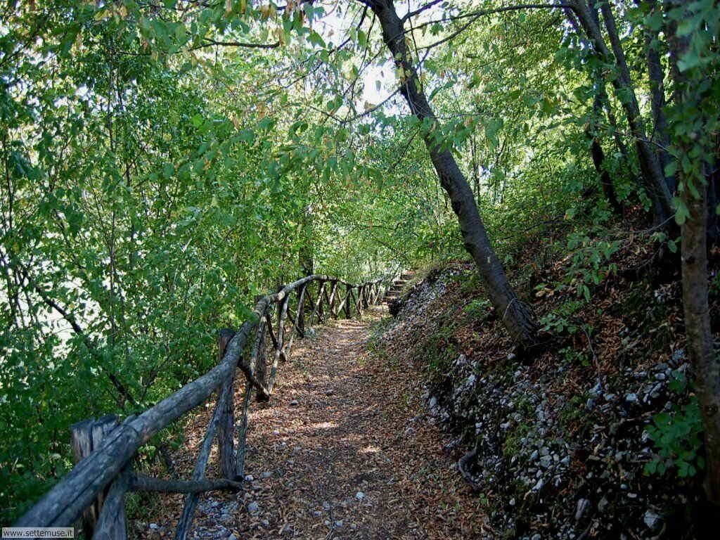 Parco Alto Garda Bresciano e Osservatorio Naturalistico 46