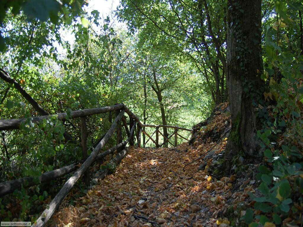 Parco Alto Garda Bresciano e Osservatorio Naturalistico 47