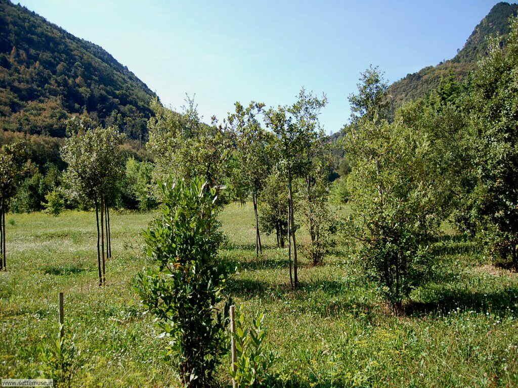Parco Alto Garda Bresciano e Osservatorio Naturalistico 50