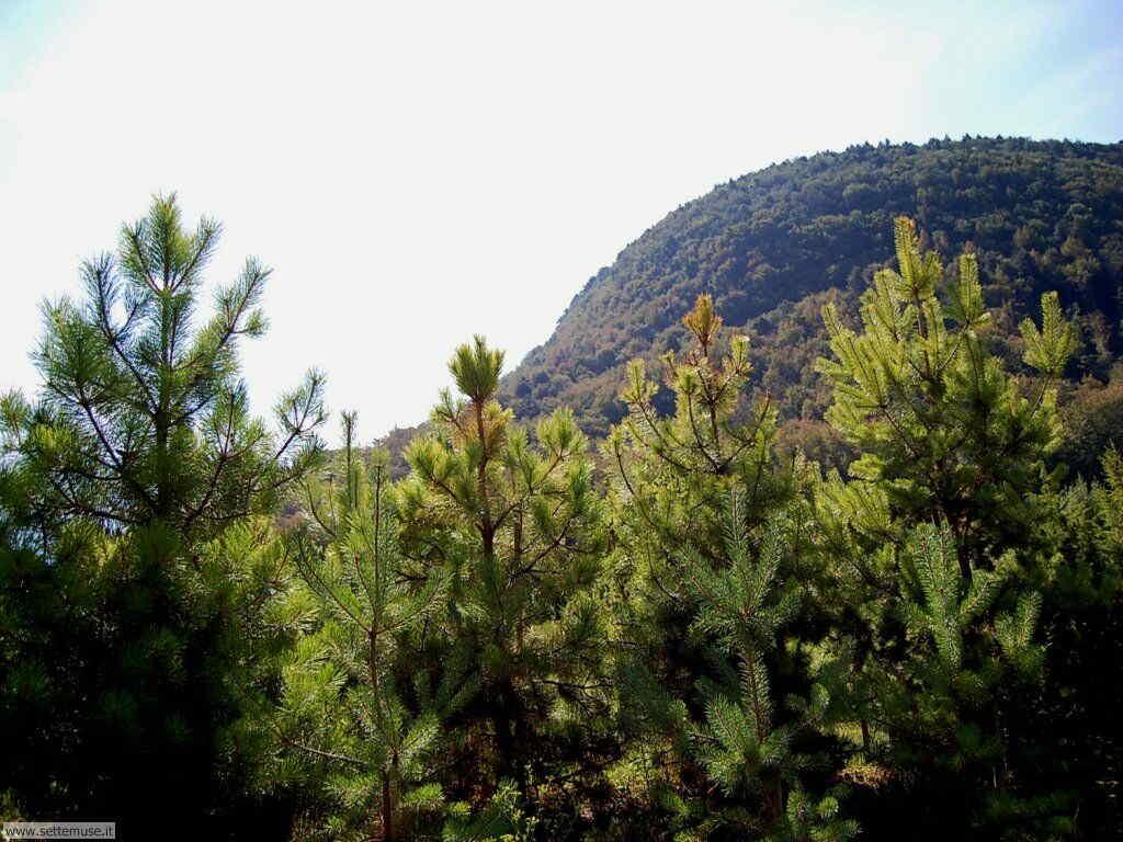 Parco Alto Garda Bresciano e Osservatorio Naturalistico 51
